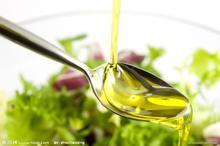 橄榄油榨油机